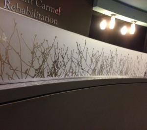 Custom Decorative Window Films for Offices